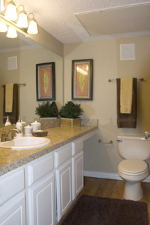 Laurel Ridge Bathroom Remodeling Creates An Inviting Atmosphere With Refacing Using Raised Panel Cabinets And